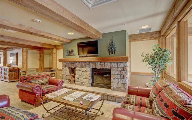 Buffalo Lodge And The Dakota Condos 8516 - photo 25
