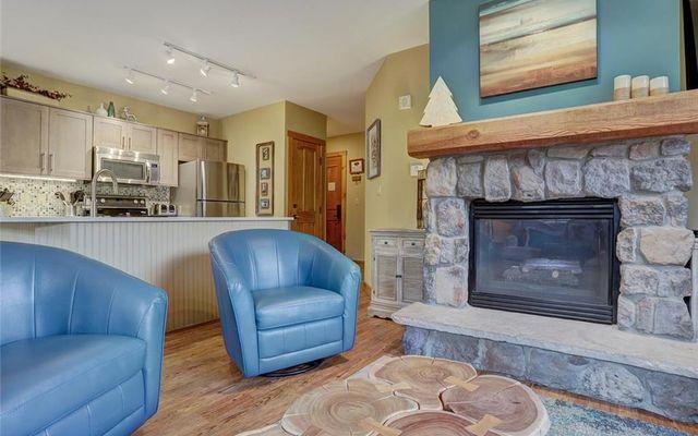 Buffalo Lodge And The Dakota Condos 8516 - photo 6