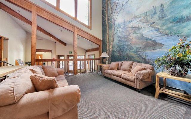Snowdance Manor Condo 407 - photo 22