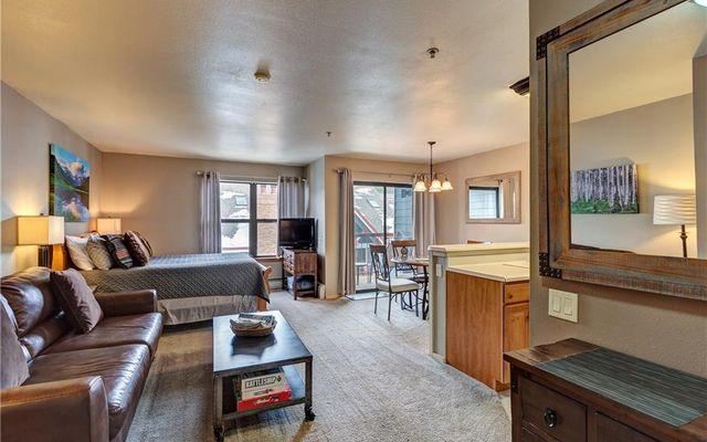 100 S Park Avenue #407 BRECKENRIDGE, CO 80132