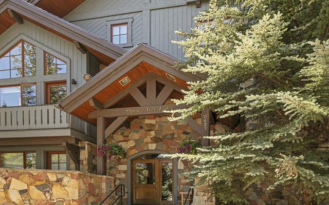 Spruce Tree Lodge 202 - photo 11