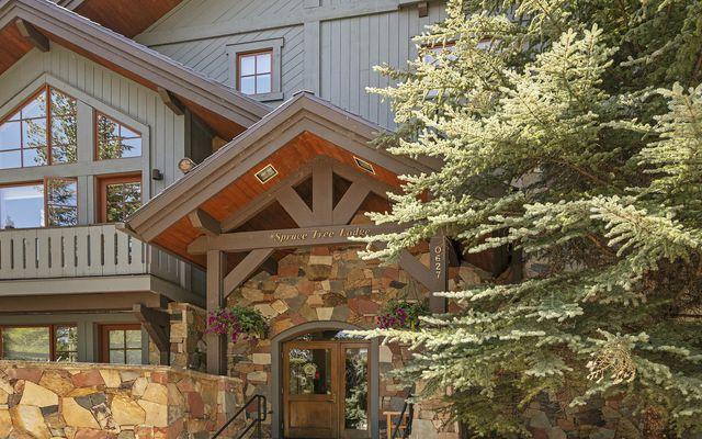 Spruce Tree Lodge 202 - photo 11