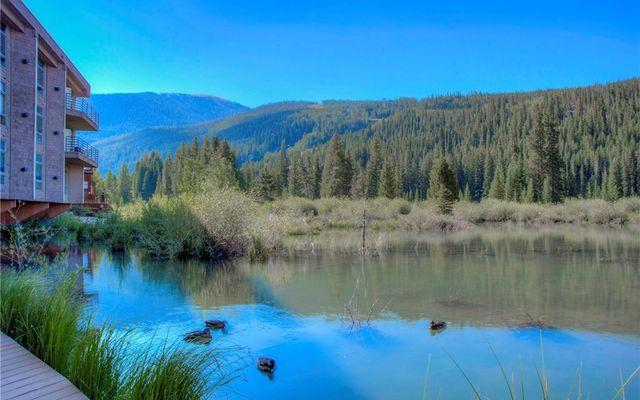 River Bank Lodge Condo 2915 - photo 24