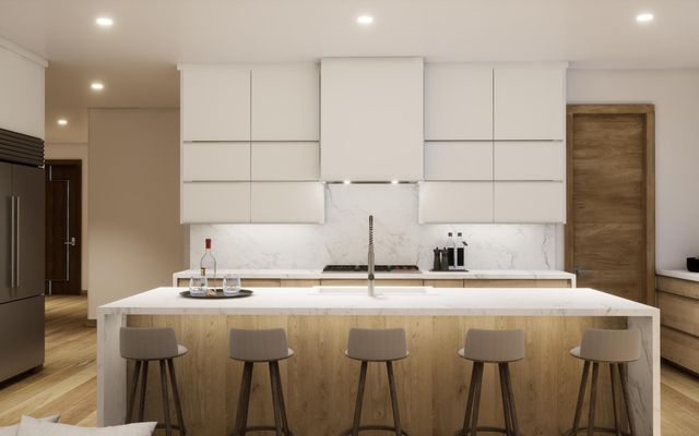 Elevation Residences 5b - photo 7