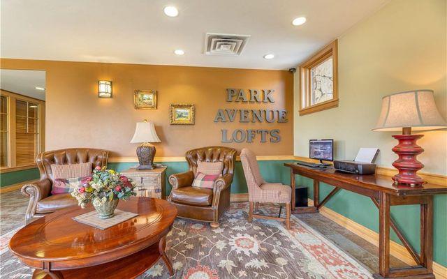Park Avenue Lofts Condo 210 - photo 30