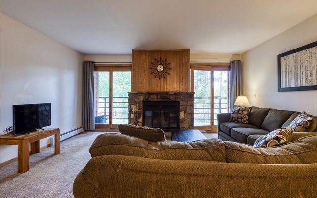 Buffalo Ridge/Village Condo 307 - photo 5