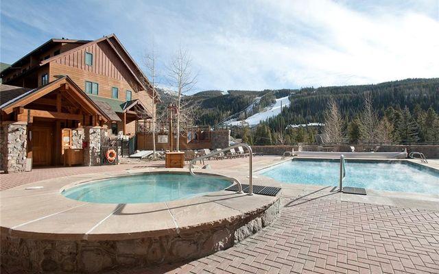 Buffalo Lodge And The Dakota Condos 8495  - photo 24