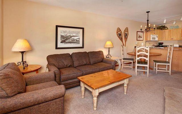Buffalo Lodge And The Dakota Condos 8495  - photo 8