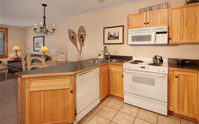 Buffalo Lodge And The Dakota Condos 8495  - photo 9