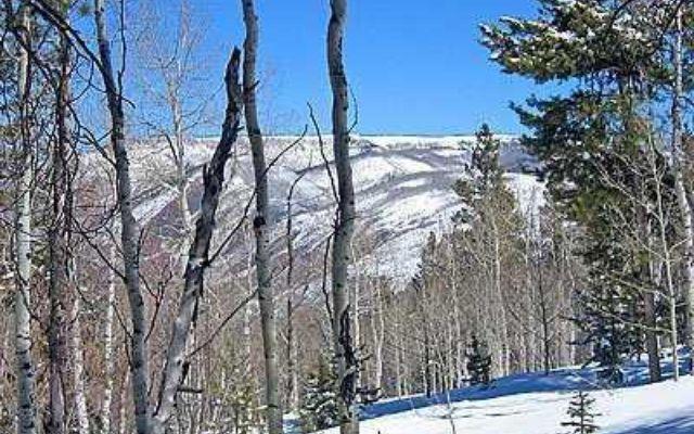 3990 Bellyache Ridge - photo 16