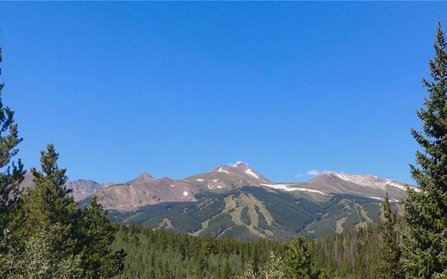 1035 Boreas Pass Road - photo 1