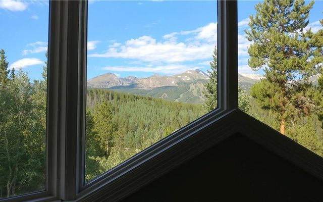 1035 Boreas Pass Road - photo 9