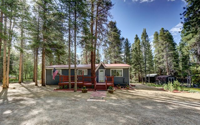 1460 Mountain View Drive Leadville, CO 80461