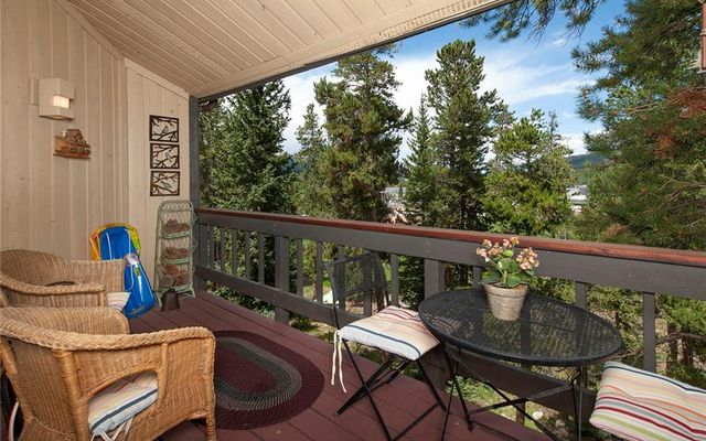 530 S French Street #309 BRECKENRIDGE, CO 80424