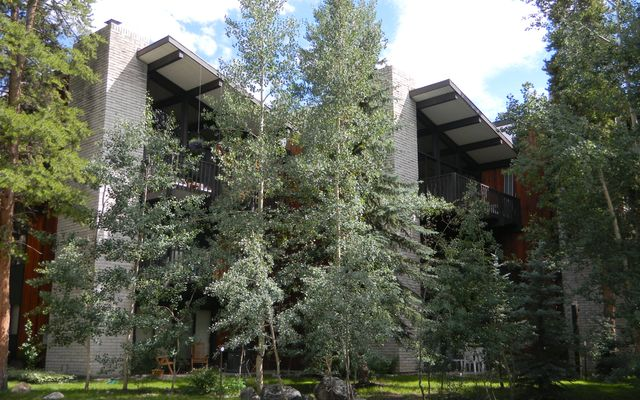 935 Columbine Road #301 BRECKENRIDGE, CO 80424