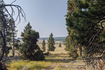 51 Potentilla Road ALMA, CO 80420