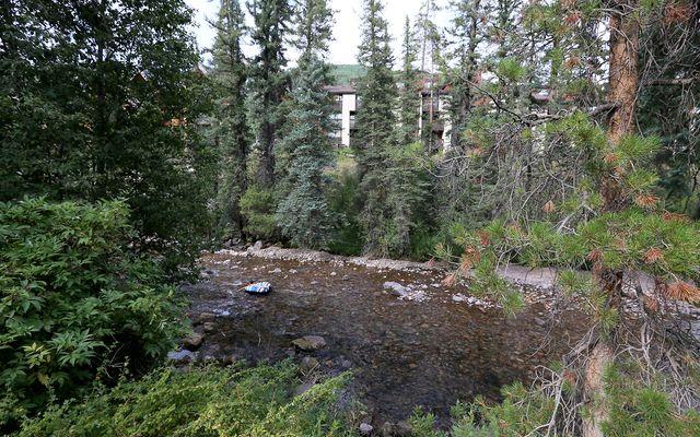 433 Gore Creek 10-B - photo 13