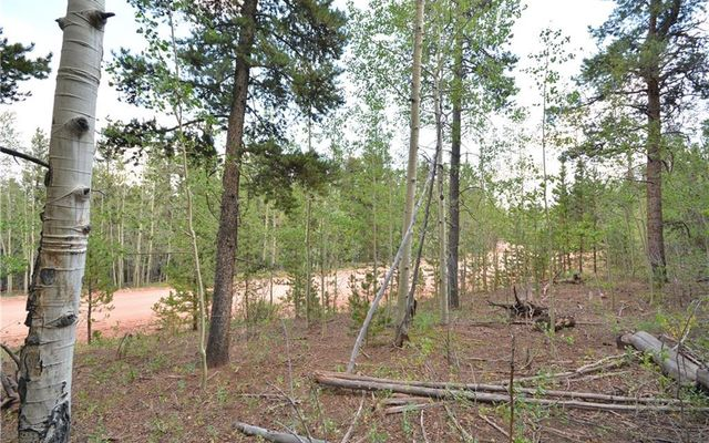 1250 Lumber Jack Road - photo 4