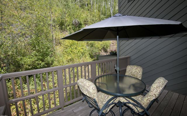 Pitkin Creek Townhomes 18 - photo 28