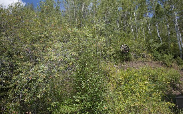 Pitkin Creek Townhomes 18 - photo 29