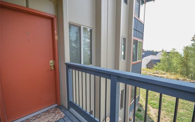 Tyrollean Terrace Condo 1b - photo 18