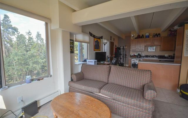 Tyrollean Terrace Condo 1b - photo 6