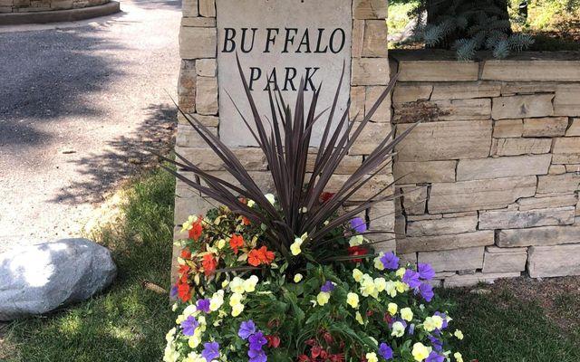 Buffalo Park 15 - photo 13