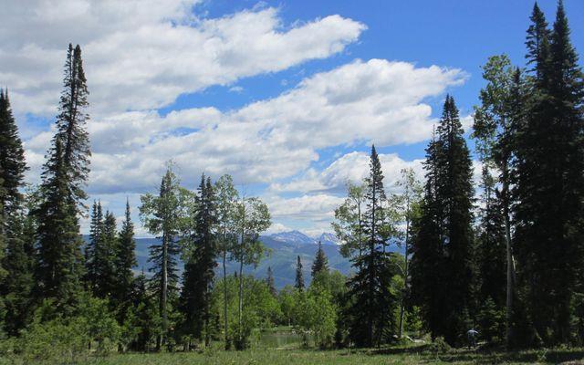 722 Granite Springs Trail - photo 60