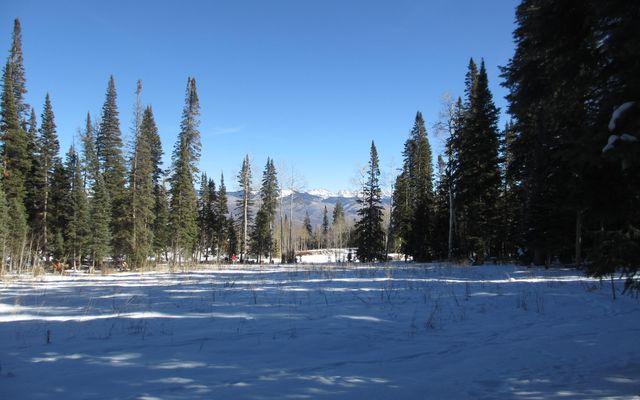 722 Granite Springs Trail - photo 62