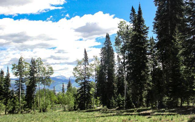 722 Granite Springs Trail - photo 67