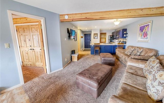 9401 Ryan Gulch Road #9413 SILVERTHORNE, CO 80498