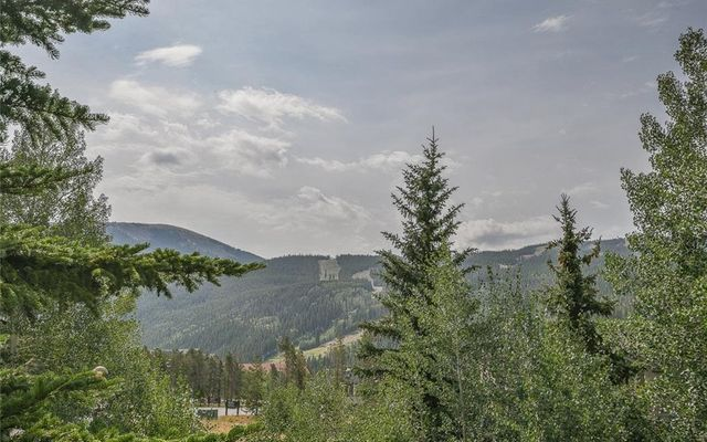 Enclave At Keystone Mountain Condo 4 - photo 2