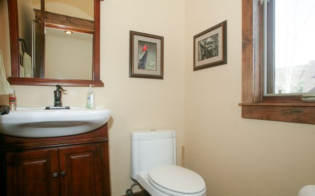 250 Black Bear Drive - photo 23
