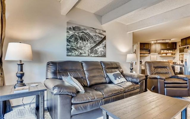 Silver Queen West Condo 204 - photo 4