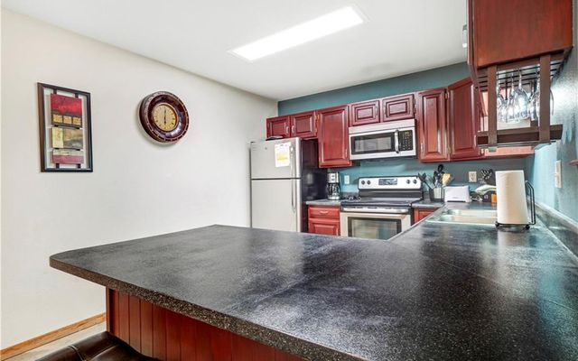 Buffalo Ridge/Village Condo 208dd - photo 13