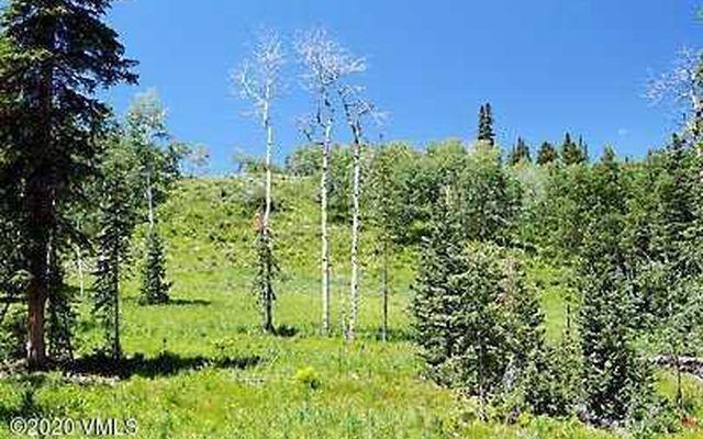 602 Granite Springs Trail - photo 15