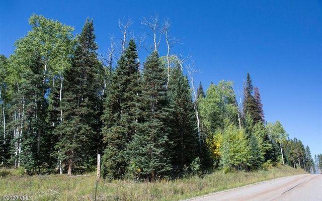 602 Granite Springs Trail - photo 16