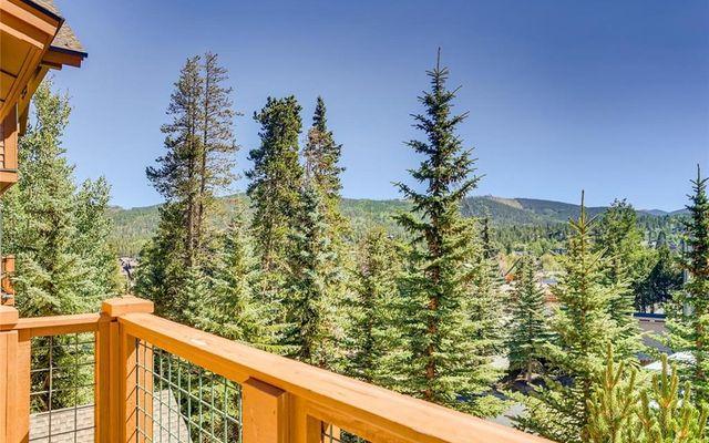 Mountain Thunder Lodge 5302 - photo 3
