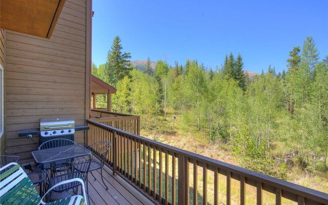 60 Lodgepole Court - photo 25