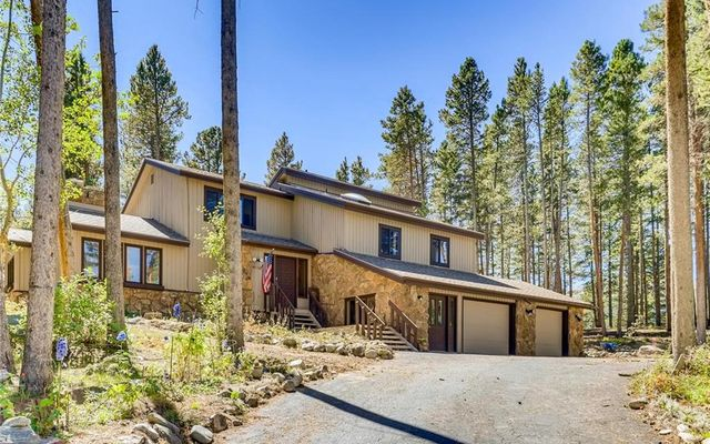 393 Blue Flag Circle BRECKENRIDGE, CO 80424