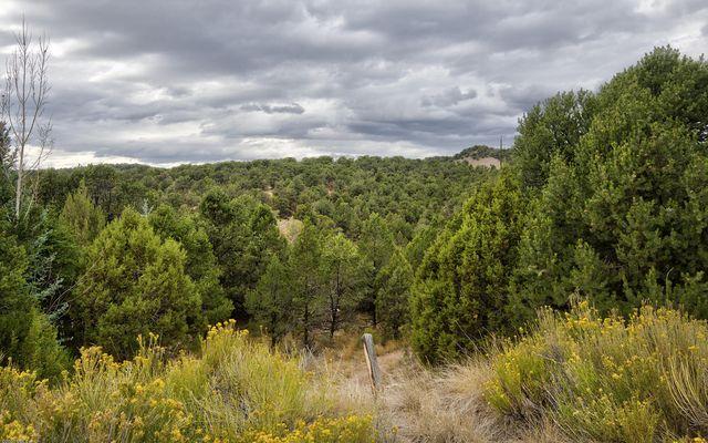 1071 Mesa Drive - photo 14