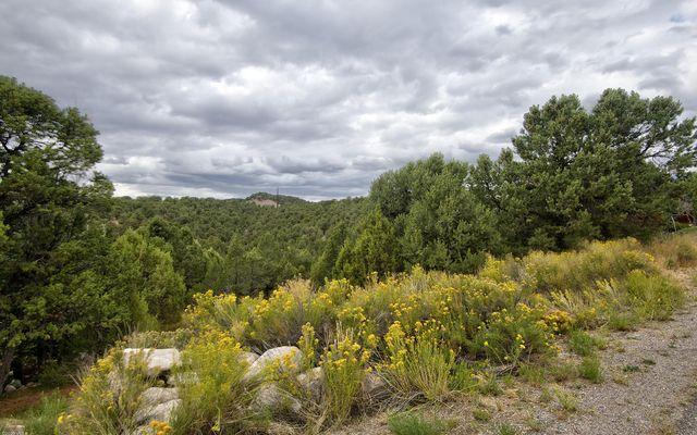1071 Mesa Drive - photo 3