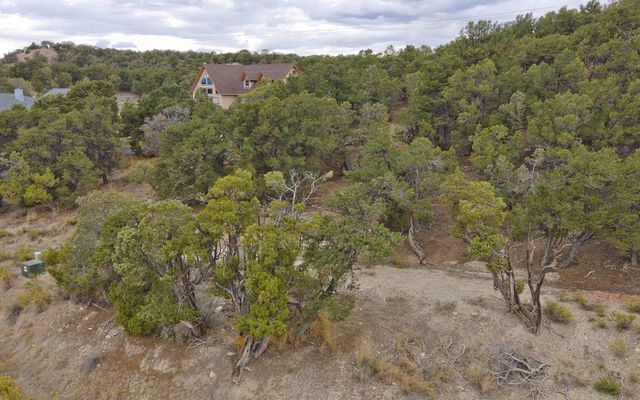 357 Neilson Gulch Road - photo 19