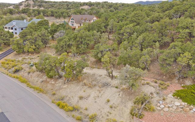 357 Neilson Gulch Road - photo 8