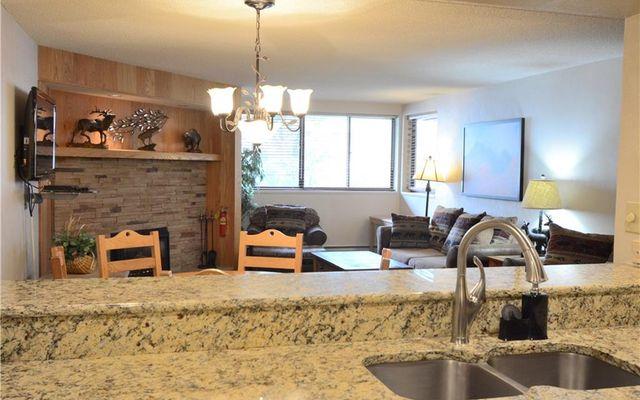 Spruce Lodge Condo 298 - photo 11