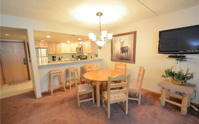 Spruce Lodge Condo 298 - photo 7
