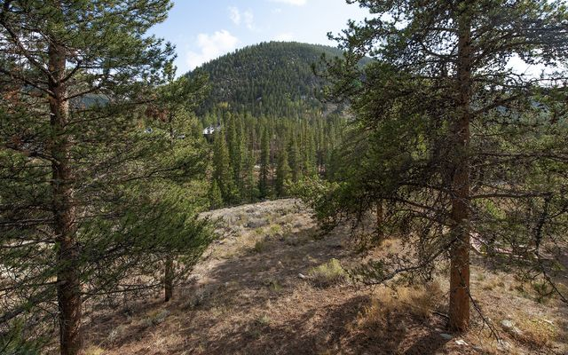 Pines At Keystone Condo 2085 - photo 11