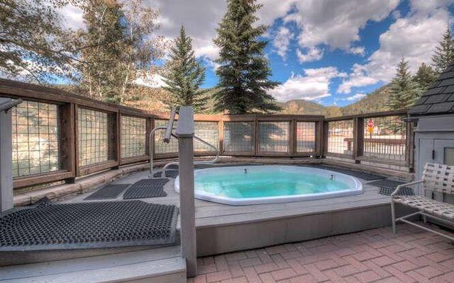 Buffalo Lodge And The Dakota Condos 8352 - photo 28