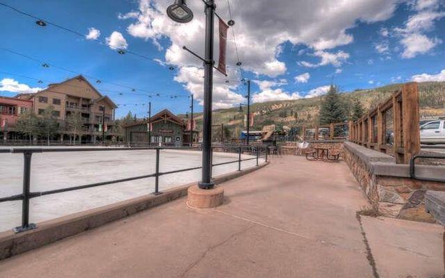 Buffalo Lodge And The Dakota Condos 8352 - photo 32