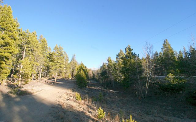 1099 County Road 4 Leadville, CO 80461